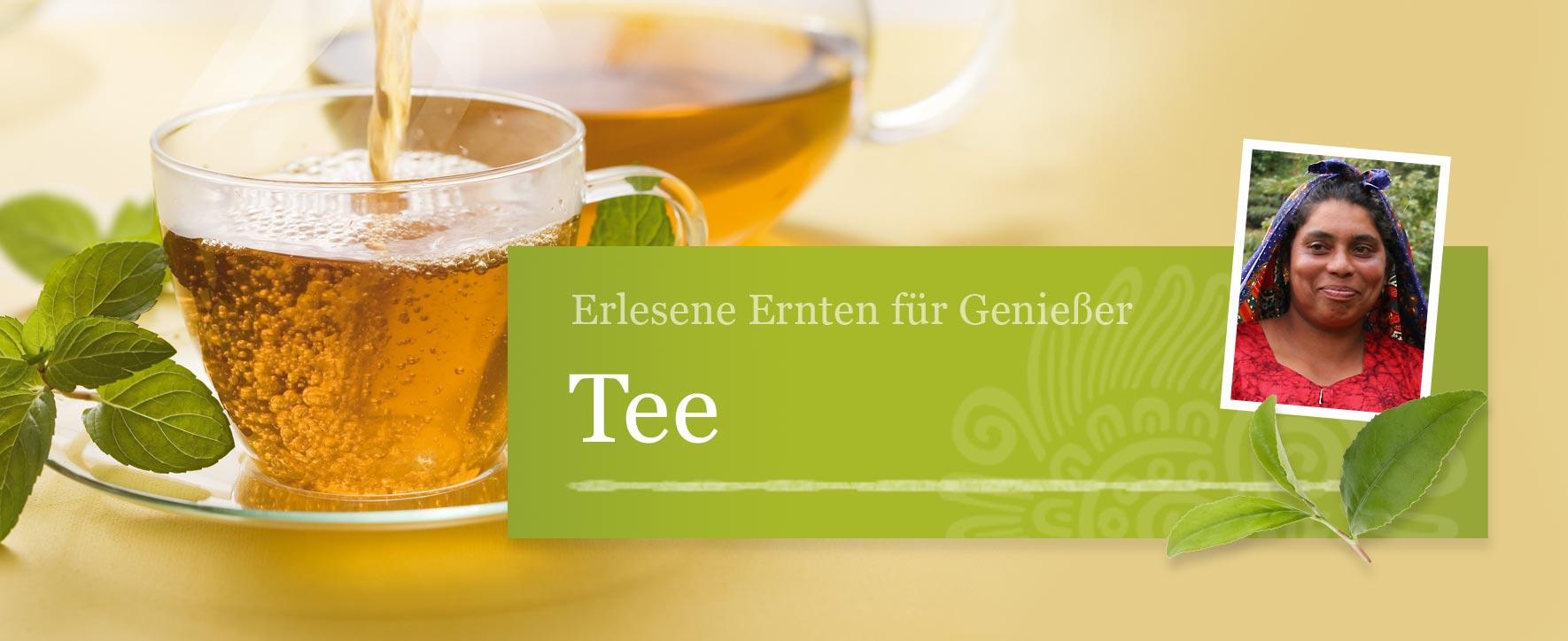 Tee – Foto: GEPA - The Fair Trade Company / Sandra Eckhardt Fotografie